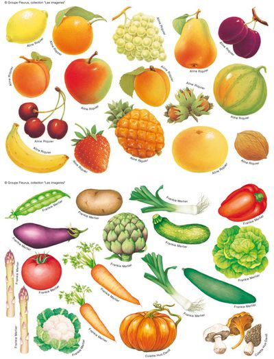 Panel de fruits et légumes