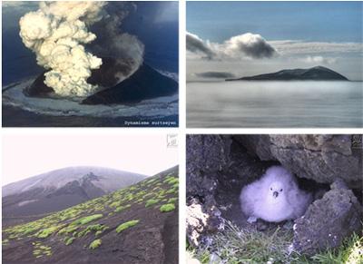 Ile de Surtsey : éruption, végétations et animaux