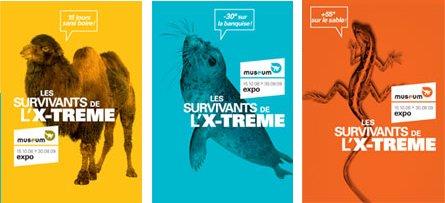 Trois affiches de l'exposition Les survivants de l'extrême