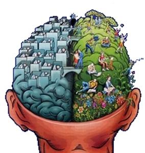 Hémisphères cérébraux : bureaux et ordinateurs pour la gauche contre jardins et fleurs pour la droite