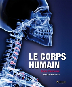 Guide le corps humain