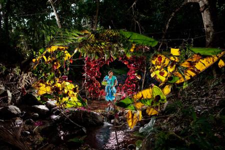 Dans une forêt, une cabane constituée de grandes feuilles lumineuses