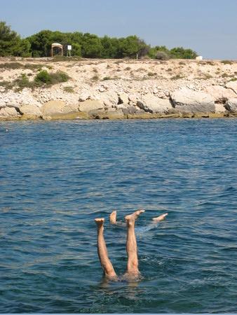 Sirtin faisant le poirier dans la mer
