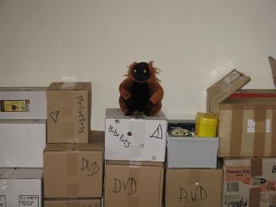 Un lémurien roux en peluche assis sur des cartons