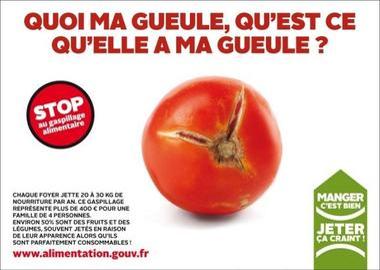 Une tomate rouge crevassée