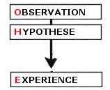 Schéma linéaire de la démarche expérimentale