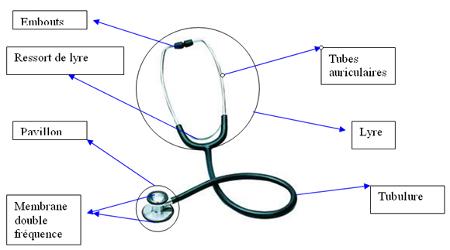 Anatomie d'un stéthoscope