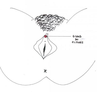 sirtin s il te pla t dessine moi un clitoris. Black Bedroom Furniture Sets. Home Design Ideas